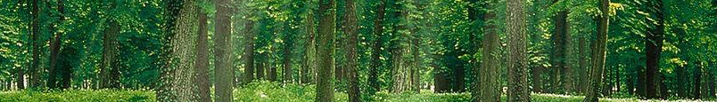Living Green Barrie